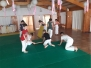 11 Judo Camp 2018