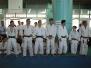 Festa del Judo 2017